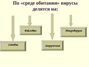 По «среде обитания» вирусы делятся на: Файловые Загрузочные Макровирусы Сетевые