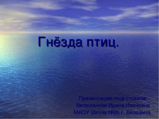 Гнёзда птиц. Презентацию подготовила: Велюханова Ирина Ивановна МАОУ Школа №2