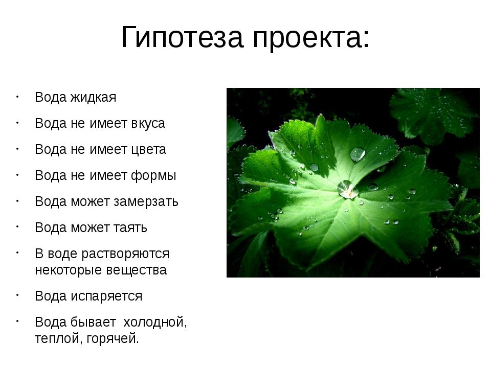 Гипотеза проекта: Вода жидкая Вода не имеет вкуса Вода не имеет цвета Вода не...