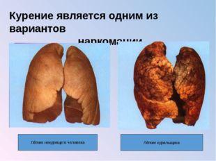 Курение является одним из вариантов наркомании Лёгкие некурящего человека Лёг