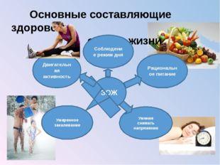 Основные составляющие здорового образа жизни ЗОЖ Соблюдение режим дня Рацион