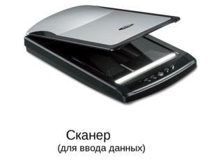 Сканер (для ввода данных)