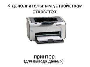 К дополнительным устройствам относятся: принтер (для вывода данных)