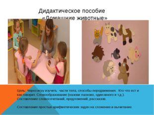 Дидактическое пособие «Домашние животные» Цель: Через игру изучить части тел