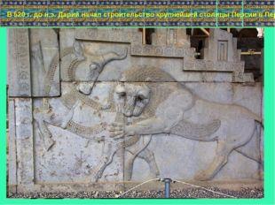 В 520 г. до н.э. Дарий начал строительство крупнейшей столицы Персии в Персеп