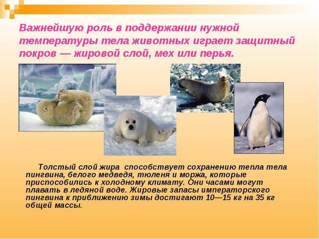 Важнейшую роль в поддержании нужной температуры тела животных играет защитный...