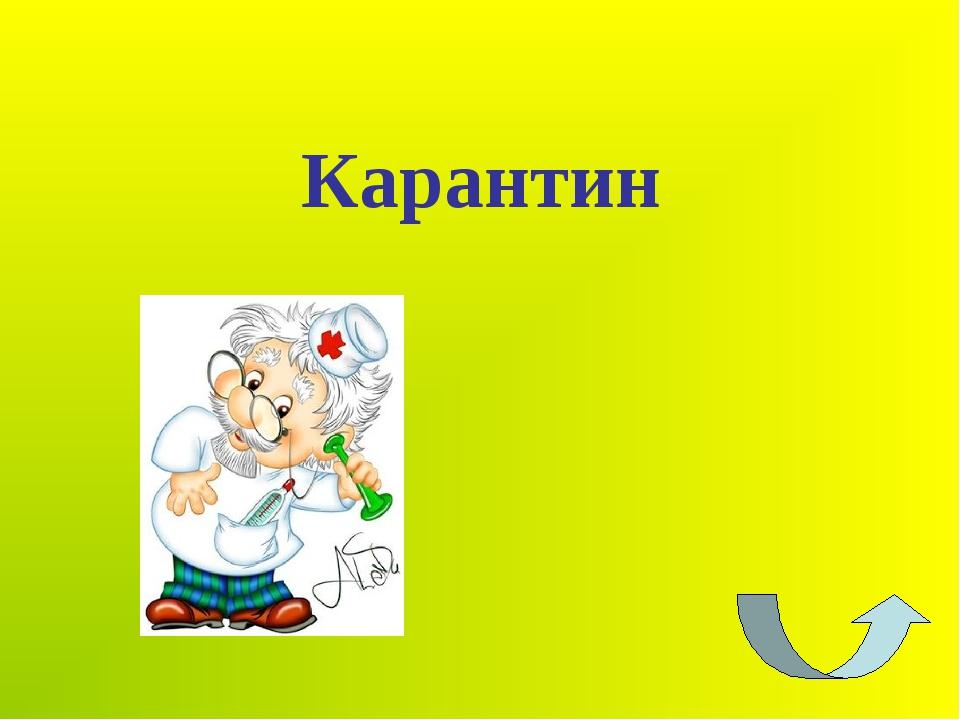 Карантин