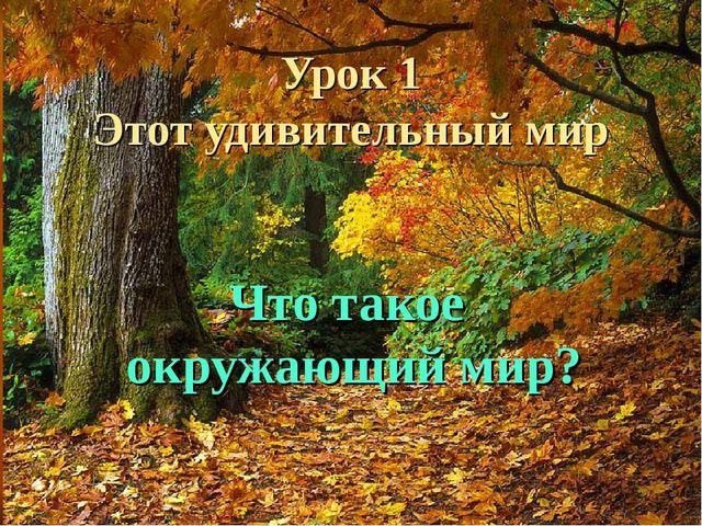 Урок 1 Этот удивительный мир Что такое окружающий мир?