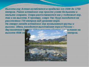 Высотагор Алтаяколеблется в пределах от 1500 до 1750 метров. Район алтайски