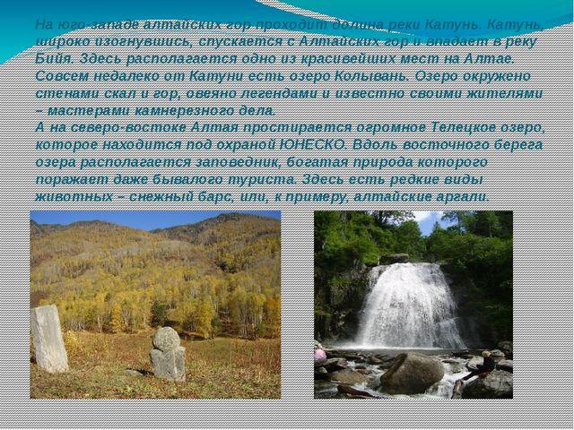 На юго-западе алтайских гор проходит долинареки Катунь. Катунь, широко изогн...
