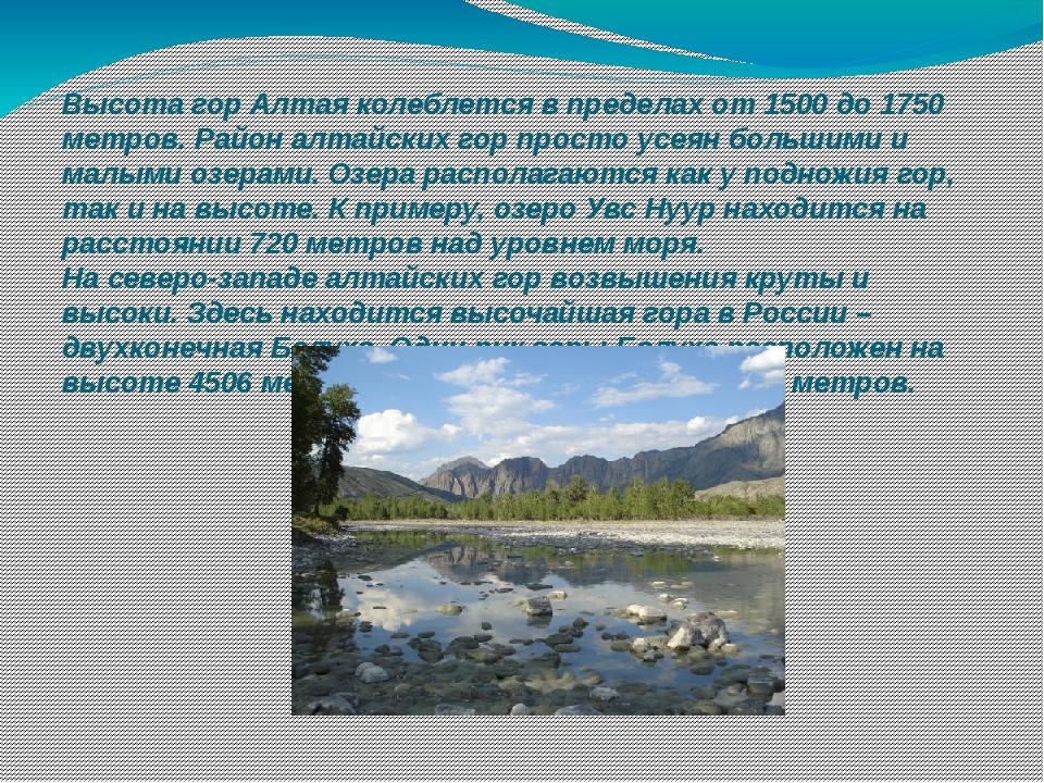 Высотагор Алтаяколеблется в пределах от 1500 до 1750 метров. Район алтайски...