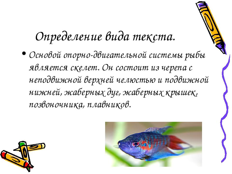 Определение вида текста. Основой опорно-двигательной системы рыбы является ск...