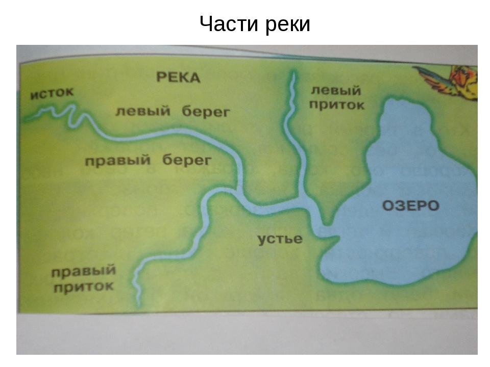 Части реки