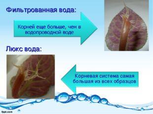 Фильтрованная вода: Люкс вода: