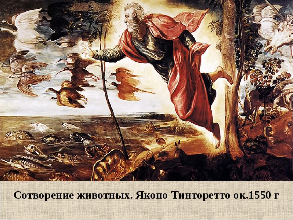 Сотворение животных. Якопо Тинторетто ок.1550 г