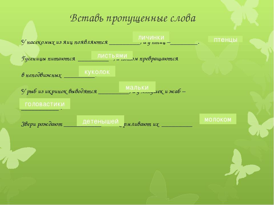 Вставь пропущенные слова У насекомых из яиц появляются _________, а у птиц –_...