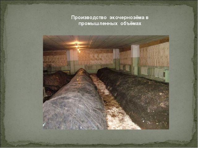 Производство экочернозёма в промышленных объёмах