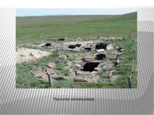 Раскопки могильников.