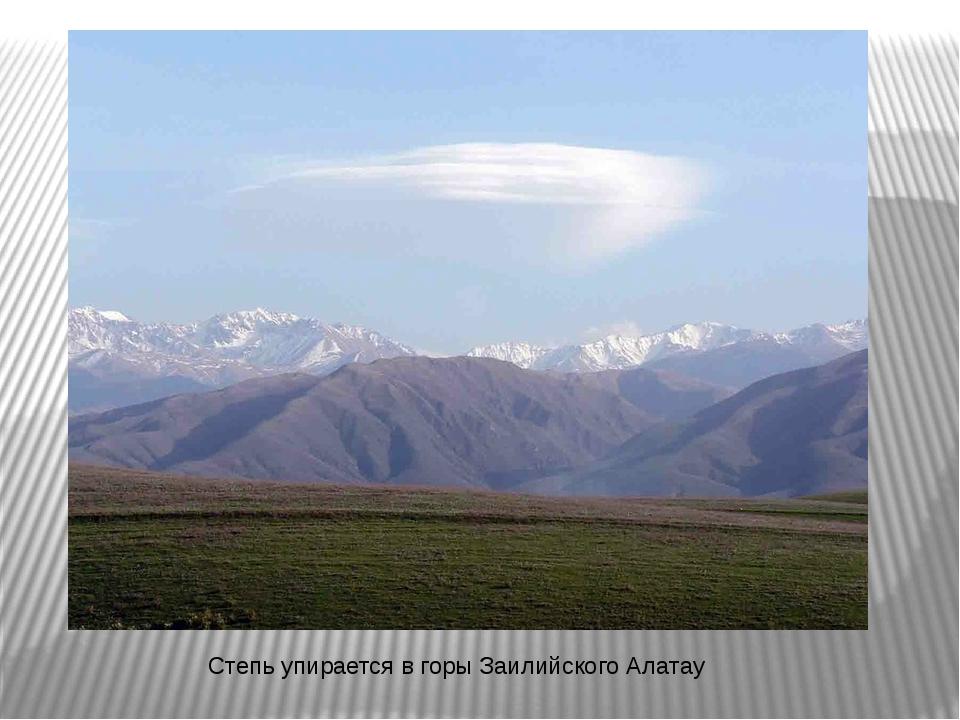 Степь упирается в горы Заилийского Алатау