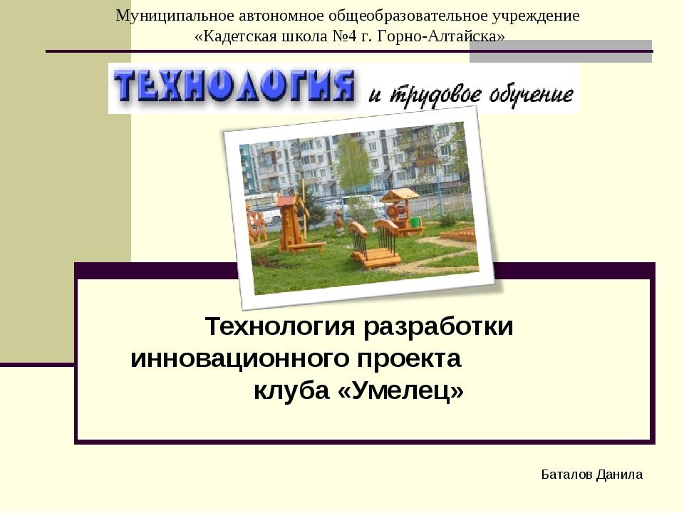 Технология разработки инновационного проекта клуба «Умелец» Баталов Данила Му...
