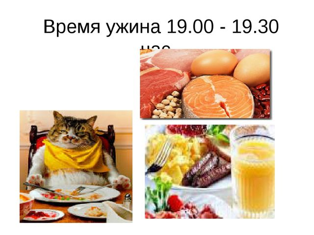 Время ужина 19.00 - 19.30 час.