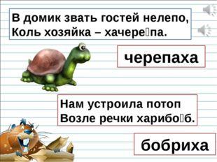 В домик звать гостей нелепо, Коль хозяйка – хачере́па. черепаха Нам устроила