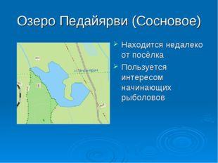 Озеро Педайярви (Сосновое) Находится недалеко от посёлка Пользуется интересом