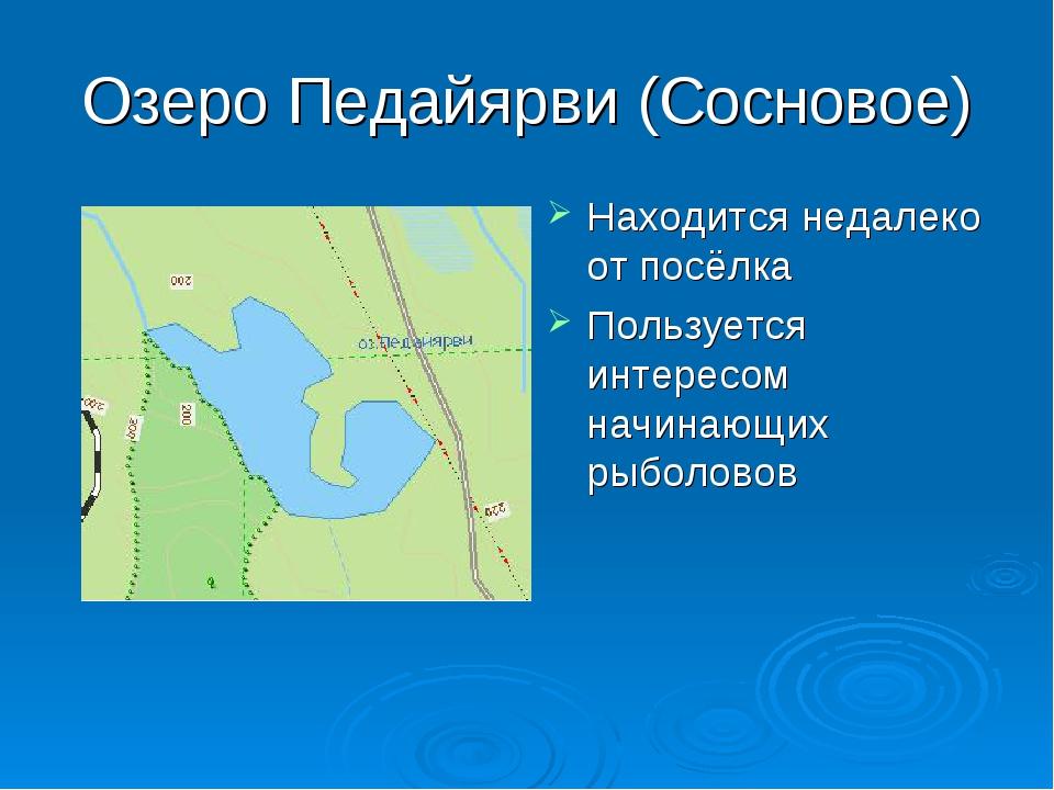 Озеро Педайярви (Сосновое) Находится недалеко от посёлка Пользуется интересом...