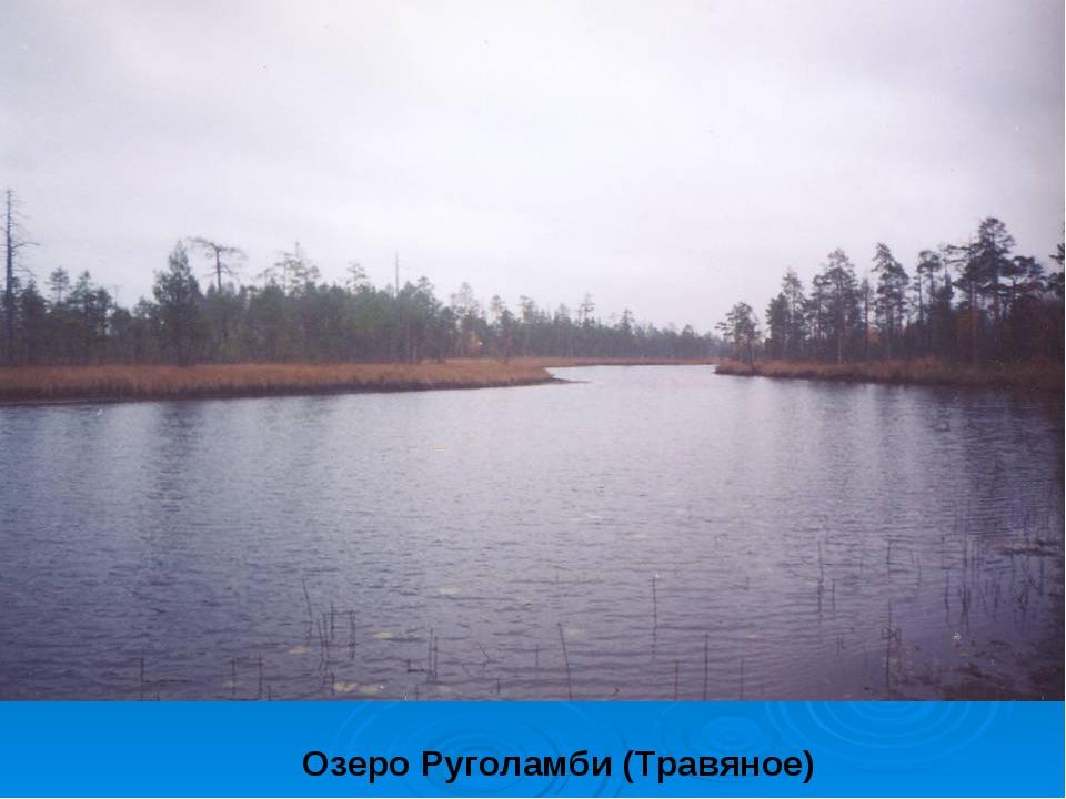 Озеро Руголамби (Травяное)