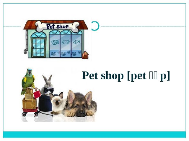 Pet shop [pet ʃɔp]