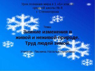 Урок познания мира в 1 «Б» классе средней школы № 8 г. Степногорска Тема: Зим