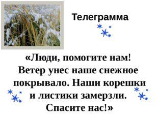 Телеграмма «Люди, помогите нам! Ветер унес наше снежное покрывало. Наши кореш