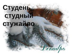 Студень студный стужайло