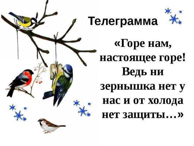 Телеграмма «Горе нам, настоящее горе! Ведь ни зернышка нет у нас и от холода...