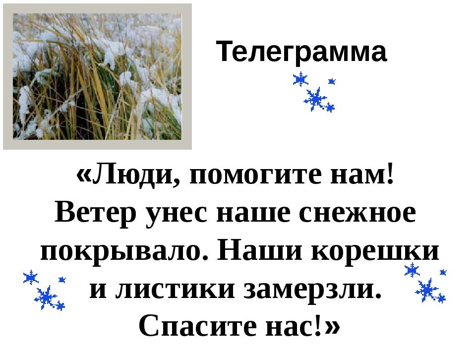 Телеграмма «Люди, помогите нам! Ветер унес наше снежное покрывало. Наши кореш...
