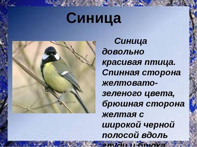Синица довольно красивая птица. Спинная сторона желтовато-зеленого цвета, бр...