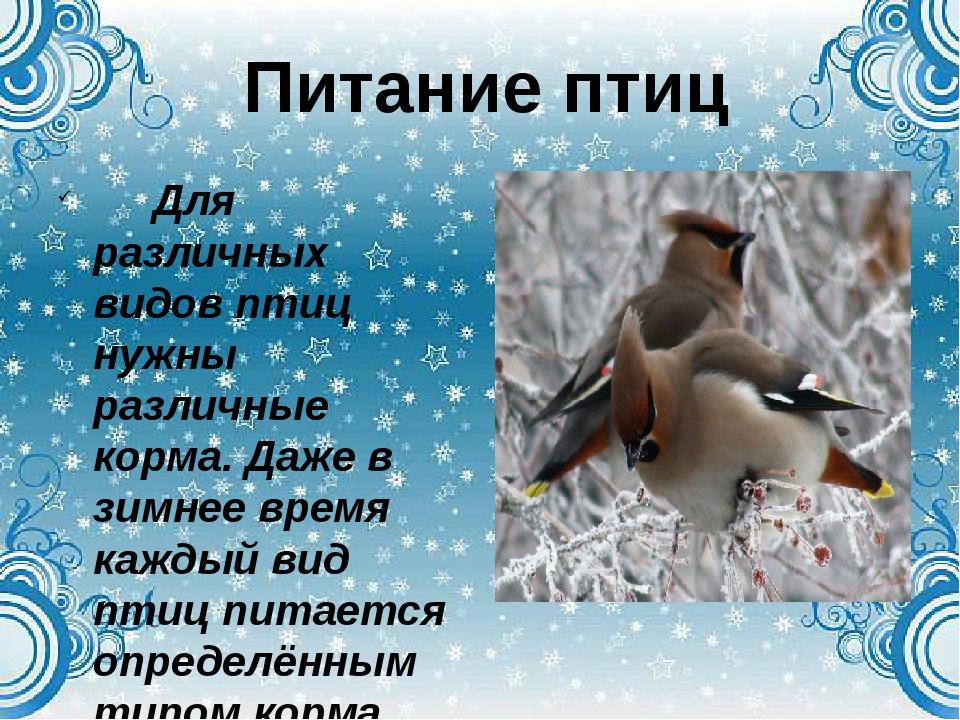 Для различных видов птиц нужны различные корма. Даже в зимнее время каждый в...