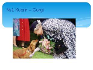 №1 Корги – Corgi