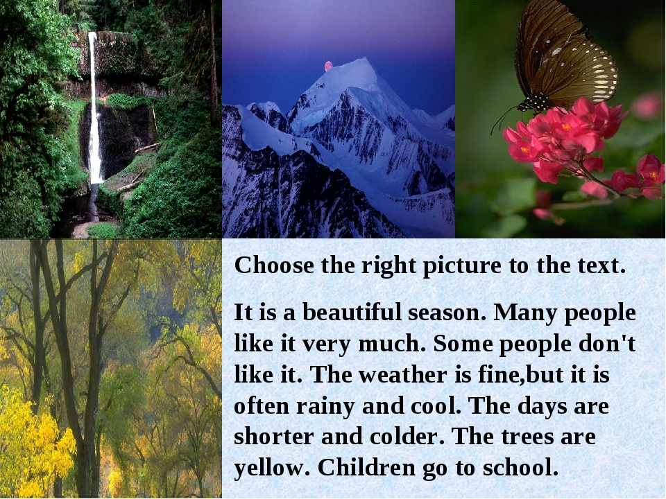 Сhoose the right picture to the text. It is a beautiful season. Many people l...