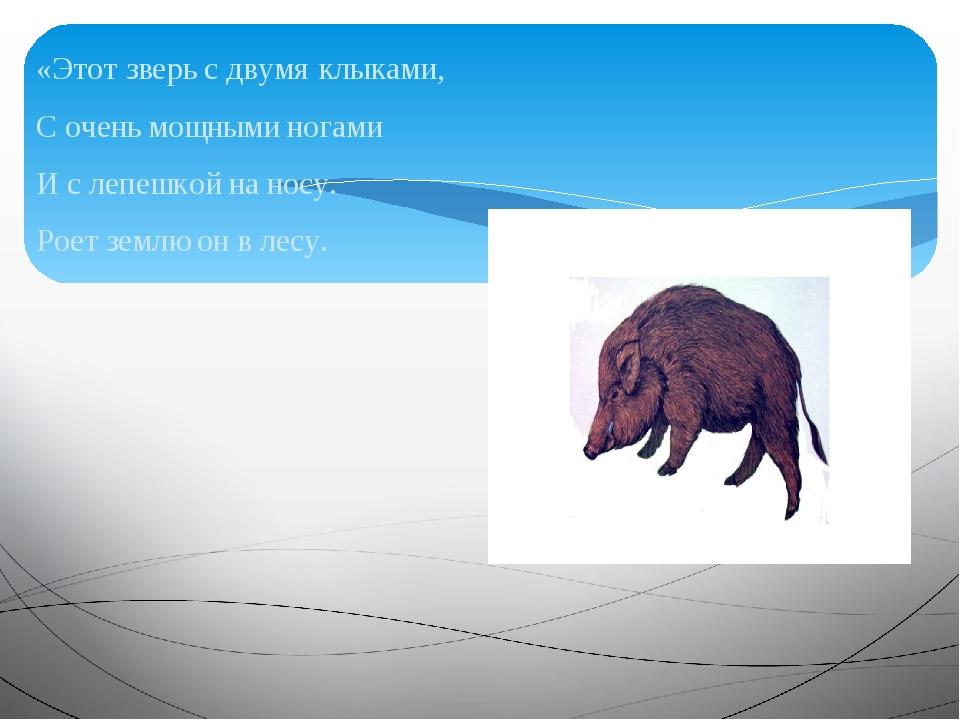 «Этот зверь с двумя клыками, С очень мощными ногами И с лепешкой на носу. Рое...