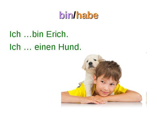 bin/habe Ich …bin Erich. Ich … einen Hund.