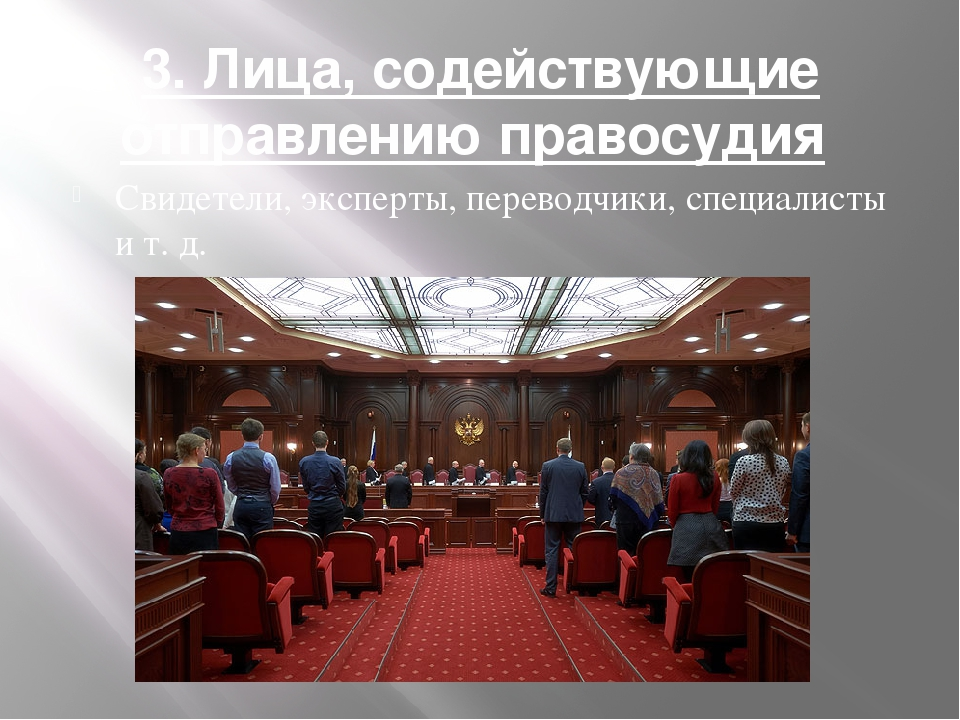 3. Лица, содействующие отправлению правосудия Свидетели, эксперты, переводчи...