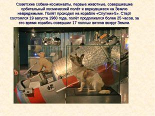 Советские собаки-космонавты, первые животные, совершившие орбитальный космиче