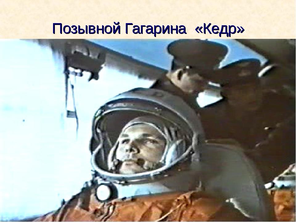 Позывной Гагарина «Кедр»