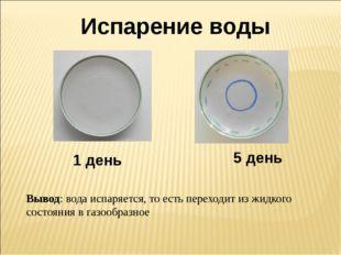Испарение воды 1 день Вывод: вода испаряется, то есть переходит из жидкого со