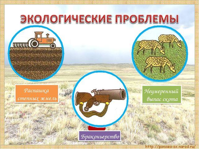 Неумеренный выпас скота Распашка степных земель Браконьерство
