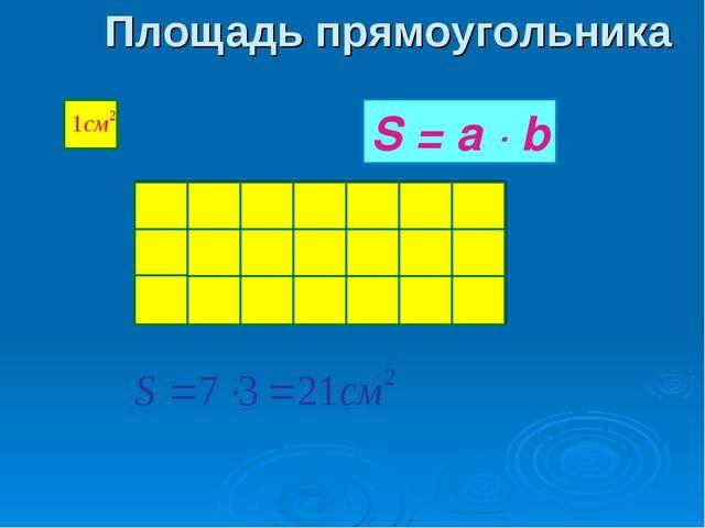 Площадь прямоугольника S = a ∙ b