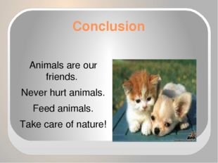Conclusion Animals are our friends. Never hurt animals. Feed animals. Take ca