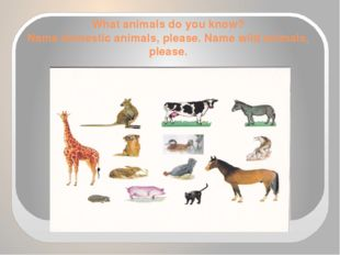 What animals do you know? Name domestic animals, please. Name wild animals, p