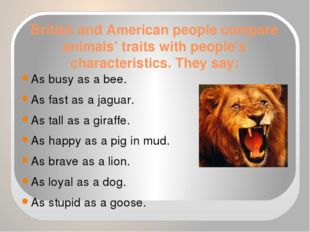 British and American people compare animals' traits with people's characteris
